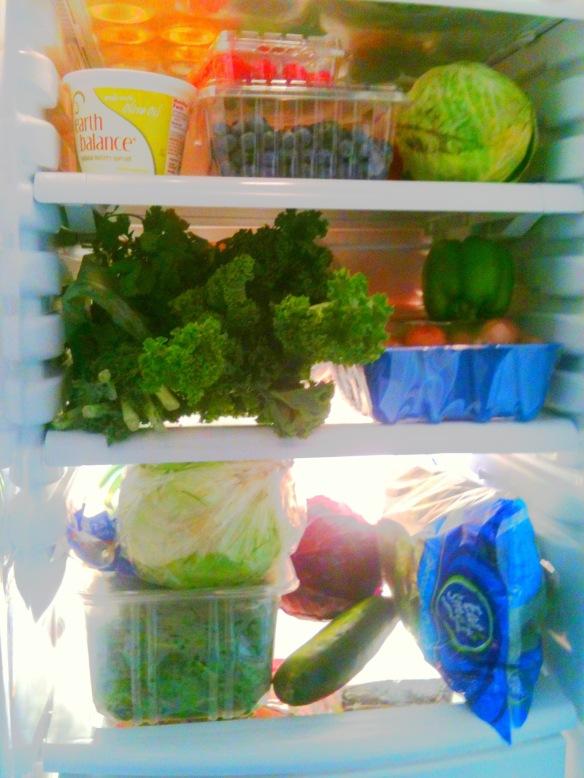 good fridge